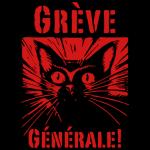 Appel vidéo à la grève générale de Gilets Jaunes du diois