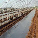Procès de travailleur.euses détaché.e.s contre Laboral Terra et 7 entreprises agricoles françaises